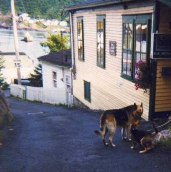 Heaven - Doug with Jack in Outer Battery, St. John's 1998