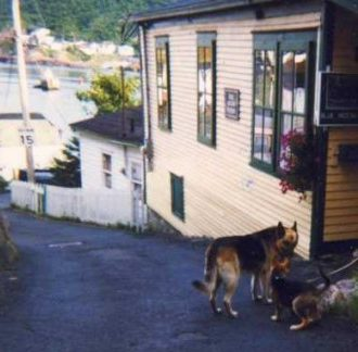 Heaven - Doug with Jack in Outer Battery, St. John's 1998 d stewart