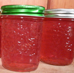 apple-jelly-th-photo-d-stewart