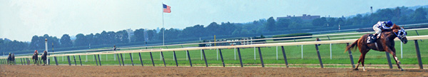belmont stretch panorama secretariat.com