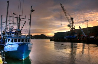 boats in St. John's harbour at sunset