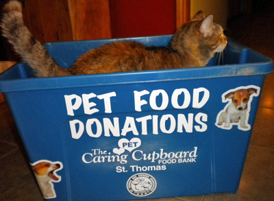 Caring Pet Cupboard donation bin, with cat in it