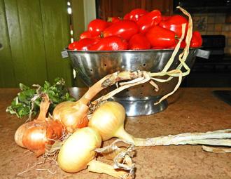 plum tomatoes photo D Stewart