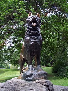 Balto's statue in NYC Central Park