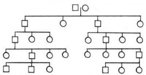 example of descendant chart style