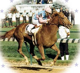 Thoroughbred great Ferdinand racing