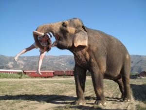 Tai lifting Sara Gruen