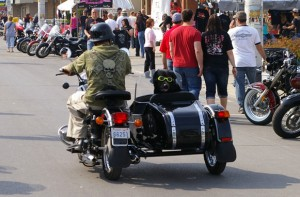 bike and sidecar, with dog, Port Dover, Friday the 13th