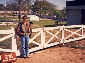 Graceland horse paddock