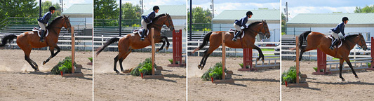 Show jumping sequence over fence, Delaware