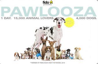 poster 2011 pawlooza dog party