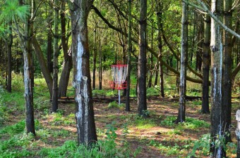 Steen Park with disc golf basket, Aylmer, Ontario