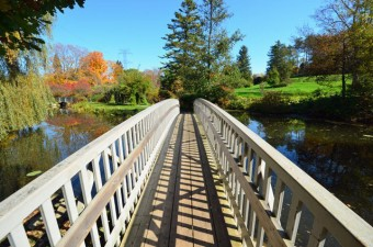 bridge over lily pond, Waterworks Park, St. Thomas, Ontario