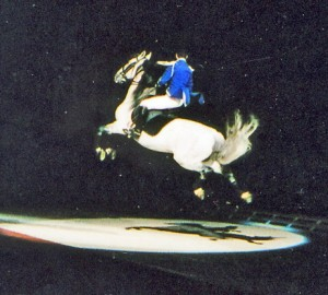 Lipizzaner performance at John Labatt Centre London Ont Oct 2002