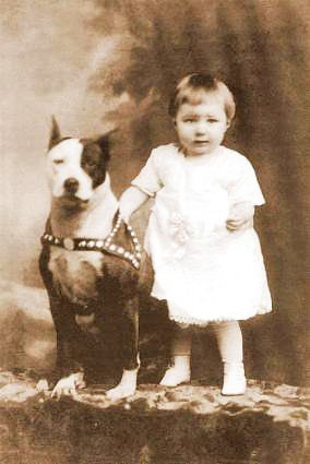 ca 1900 photo of child with Nanny dog Pit Bull