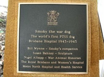 Plaque-12Dec12-Smoky war dog 1st PTSS dog Brisbane Hospital