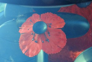 New Brunswick Legion car poppy
