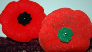 Black and green-centred poppies
