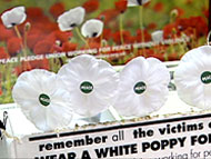 white poppy box
