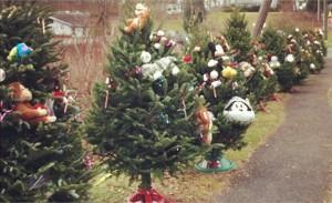 26-Newtown-Christmas-trees