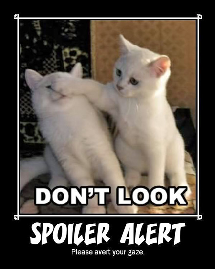 Spoiler-Alert-kittens