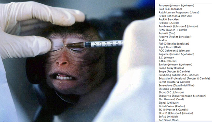 cosmetic companies animal testing list 11-down-Revlon