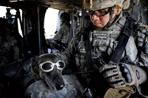 lab wearing goggles with man inside military aircraft
