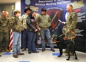 US military handing over dog Eli to late handler Rusk's family