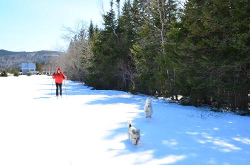 winter resort skiing-photo-Jim-Stewart