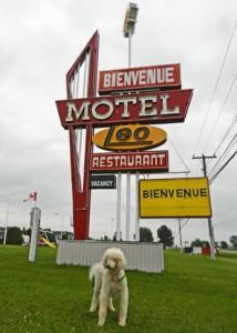 motel-leo-photo-d-stewart