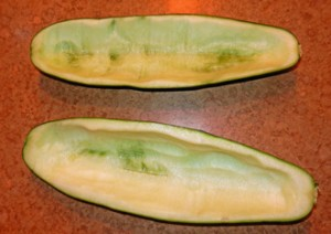 zucchini-scooped-out-photo-D-Stewart