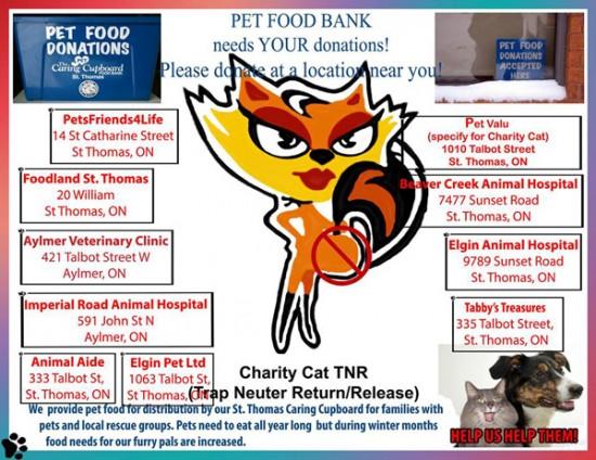 Charity-Cat-TNR
