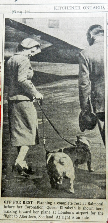 Queen Elizabeth and corgis 1953