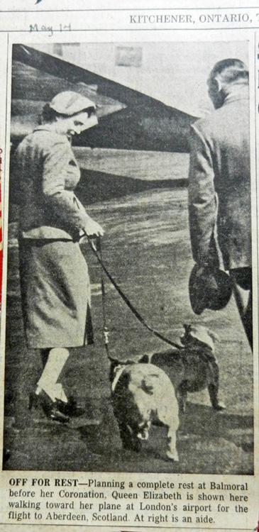 Queen Elizabeth and corgis 1953