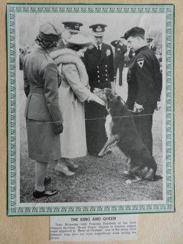 Their Majesties with Princess Elizabeth and Civil Defence dog
