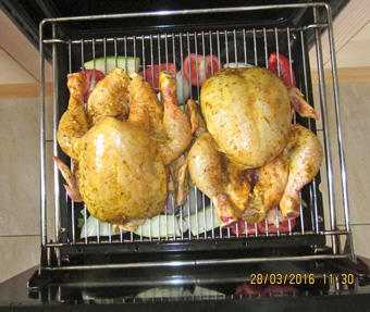 guinea fowl over veges-Gesell-photos
