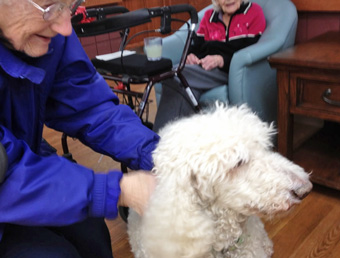 Leo being therapy dog at Glendale Crossing 2012