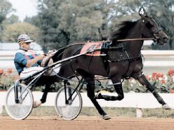 Ralph Hanover racing photo Canadian Horse Racing Hall of Fame
