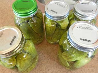 dill-pickles-photo-d-stewart