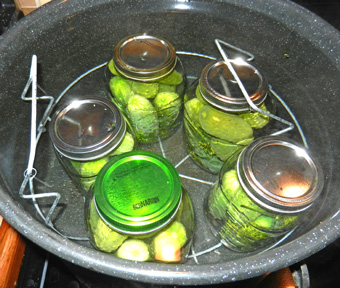 jars-in-canner-photo-d-stewart