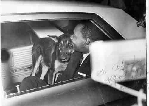 Dr King with dog in car, photo signed by him 1964 Florida wikicommons