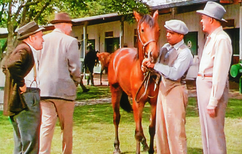 the story of seabiscuit stable decisions made