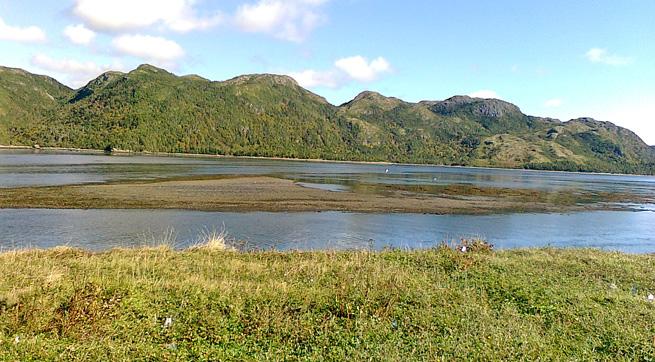 Terrenceville_Newfoundland-panoramio-2010-ColleenMartin