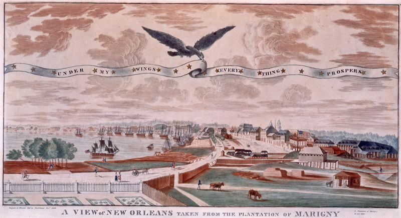 View_of_New_Orleans_Under_My_Wings-j-l-bouqueto-de-woiseri-1803