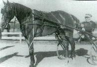 Dudey-Patch-canadian-horse-racing-hall-of-fame