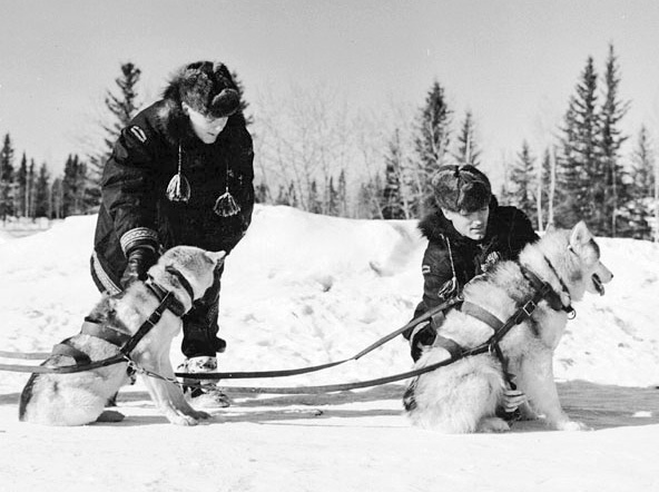RCMP sled dogs 1957-Natl-Archives-Cda-wikicommons