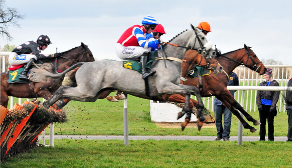Horse_racing_Paul-2009-Bangor-on-Dee-wikicommons
