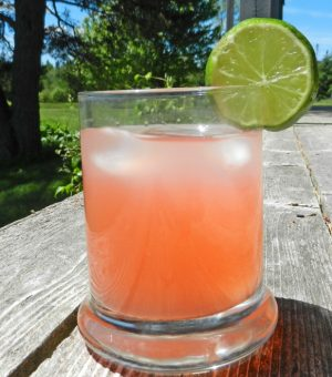 glass of rhubarb juice with lime slice