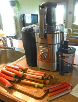 juicer ready for rhubarb